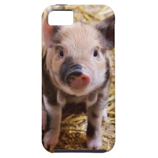 Bebés lindos del corral de los animales del campo  iPhone 5 Case-Mate protector