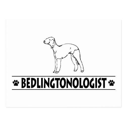 Bedlington Terrier chistoso Postales