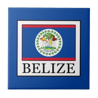 Belice Azulejo De Cerámica