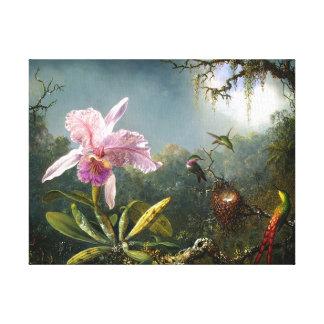 Bella arte de la orquídea y de tres colibríes