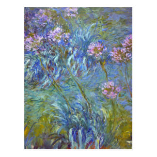Bella arte GalleryHD floral del Agapanthus de Postal