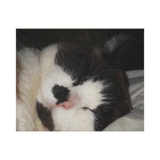 Bella durmiente impresión en lienzo