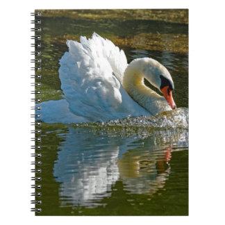 Belleza agresiva cuaderno