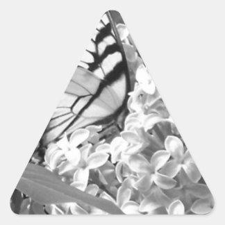 Belleza de B&W Pegatina Triangular