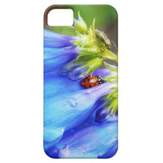 Belleza de Colorado Funda Para iPhone SE/5/5s