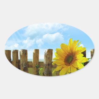 Belleza de la naturaleza del girasol pegatina ovalada