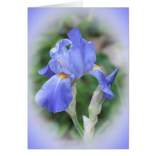 Belleza del iris tarjeta de felicitación