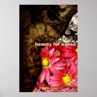 Belleza para las cenizas póster