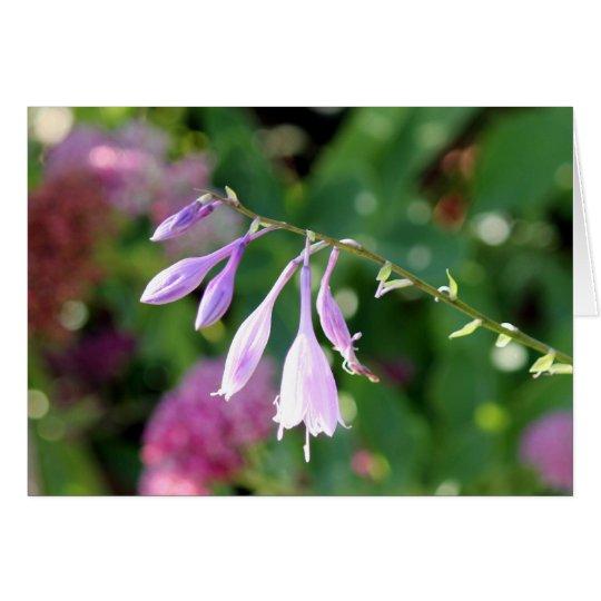 belleza púrpura tarjeta de felicitación