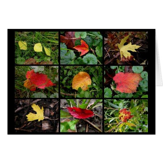 Bellezas de la caída (en) tarjeta de felicitación
