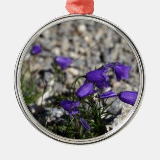 Bellflower de Earleaf (cochleariifolia del Adorno De Cerámica