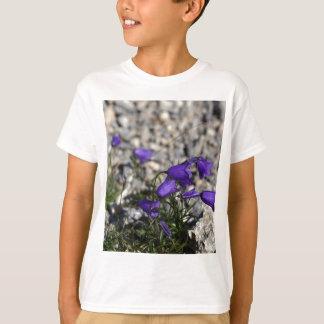 Bellflower de Earleaf (cochleariifolia del Camiseta
