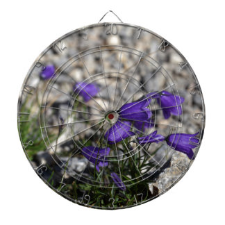 Bellflower de Earleaf (cochleariifolia del Diana