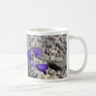 Bellflower de Earleaf (cochleariifolia del Taza De Café