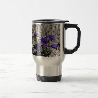 Bellflower de Earleaf (cochleariifolia del Taza De Viaje