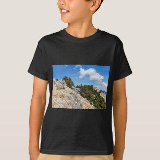 Bench en la montaña rocosa con los árboles y el camiseta