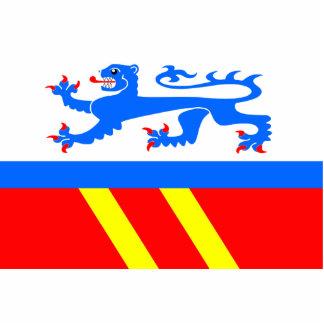 Benešov U Semil, CZ, bandera de la República Checa Esculturas Fotograficas