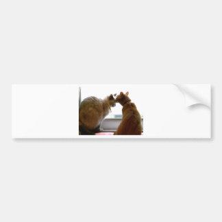 Besar artículos del amor y de la amistad de los ga etiqueta de parachoque