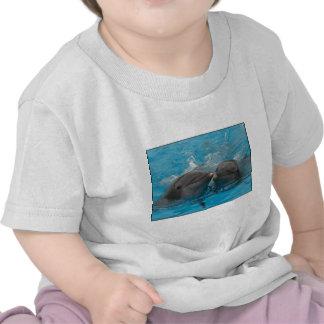 Besar delfínes camisetas