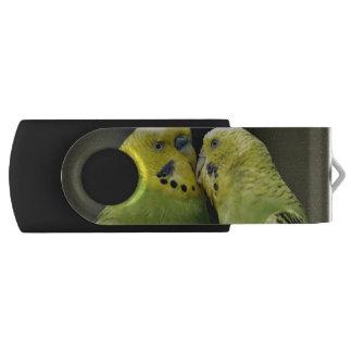 Besar el pájaro del loro de Budgie Memoria USB