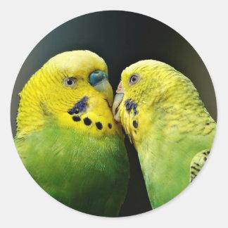Besar el pájaro del loro de Budgie Pegatina Redonda