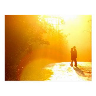Besar pares en la luz del sol postal