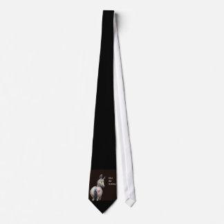 bese mi lazo del burro corbata