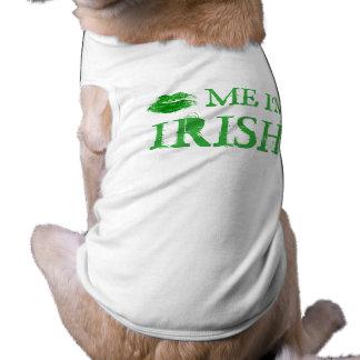 Béseme que soy día del St. Patty irlandesa