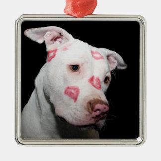 Besos del lápiz labial del amor para el perro de adorno cuadrado plateado