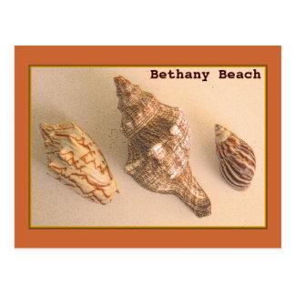 Bethany descasca la postal