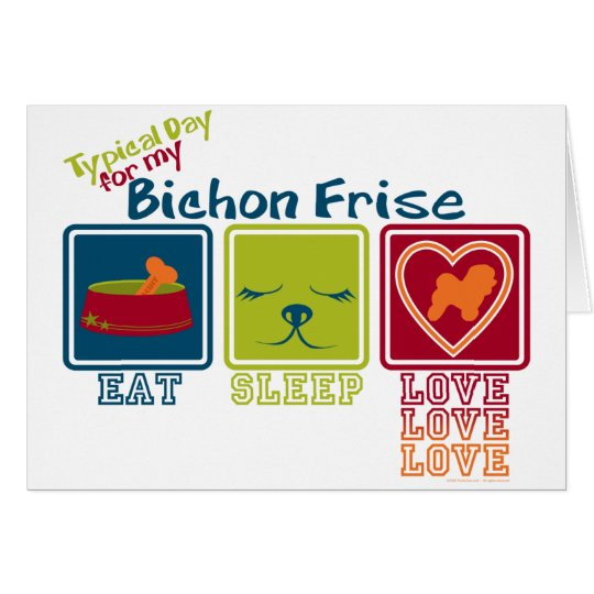 Bichon Frise Tarjeta Pequeña