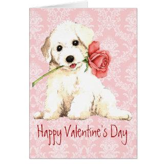 Bichon subió tarjeta del día de San Valentín
