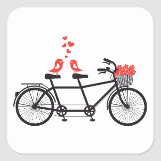 bicicleta en tándem con los pájaros lindos del colcomanias cuadradass