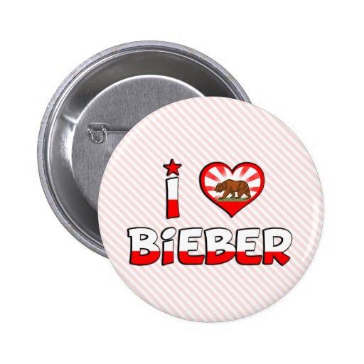 Bieber, CA Pin