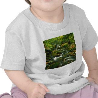 Bifurcación Mountian ahumado del rugido de la casc Camisetas