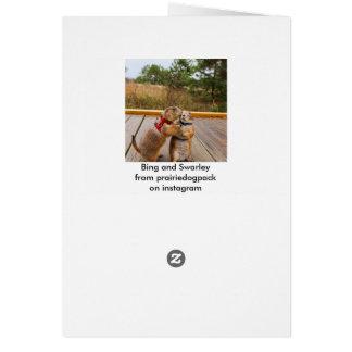 Bing y tarjeta de la cabra