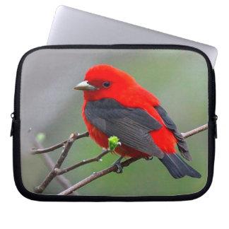 Bird red_iphone funda para portátil