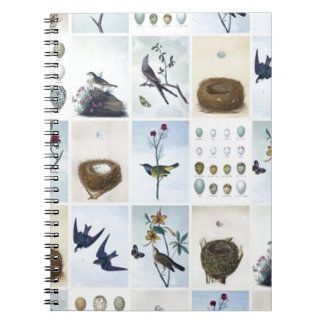 Birds and Nests Cuaderno