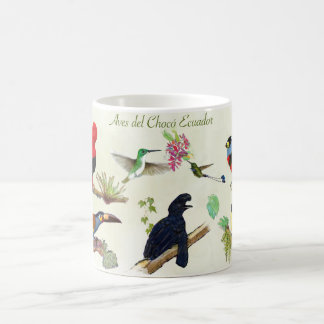 Birds Cloud forest Ecuador Choco Taza De Café