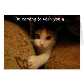 Birthday Card: The Kitty's coming! Tarjeta De Felicitación