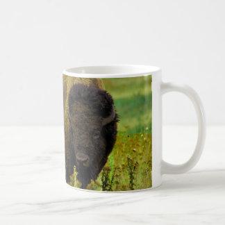 Bisonte americano taza de café