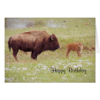 Bisonte y becerro en tarjeta de cumpleaños de