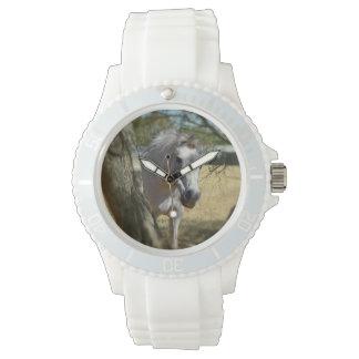 Blanco como la nieve el caballo, reloj blanco de