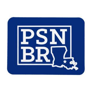 Blanco del BR del PSN en el imán azul del estado