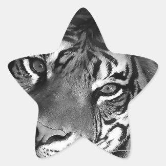 blanco-tigre pegatina en forma de estrella
