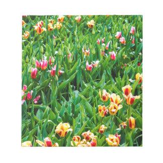 Bloc De Notas Campo con los tulipanes rosados y amarillos