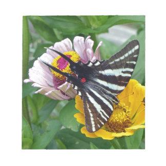 Bloc De Notas Cebra Swallowtail+Escarabajo japonés