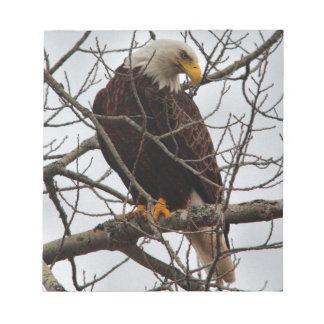Bloc De Notas Eagle calvo