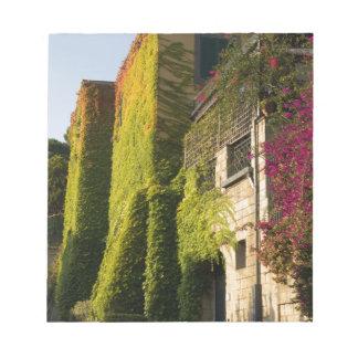 Bloc De Notas Hojas coloridas en las paredes de la casa