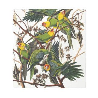 Bloc De Notas Loro de Carolina - John James Audubon (1827-1838)
